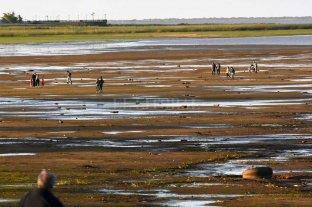 """La laguna Setúbal seguirá baja pero no  se debería """"secar"""" como el año pasado"""