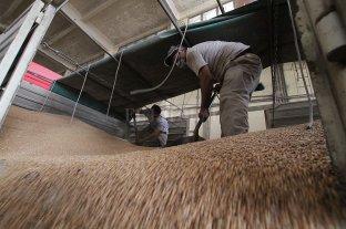Las exportaciones de bienes producidos en la provincia de Santa Fe crecieron un 50%
