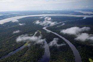 La selva amazónica se habría creado por el asteroide que acabó con los dinosaurios
