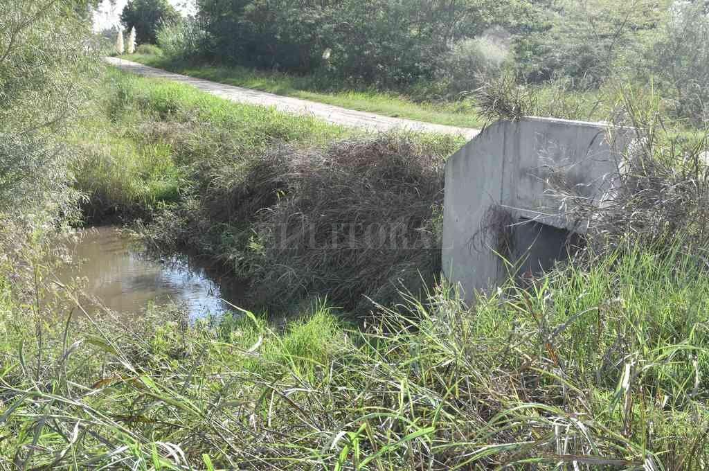 El lugar del hallazgo se encuentra a unos 300 metros al oeste de la ruta 11, a la altura de calle Chubut de la ciudad de Recreo. Crédito: Guillermo Di Salvatore