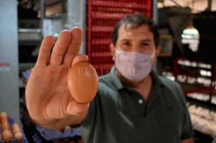 En un pueblo santafesino obtienen casi 840 mil huevos mensuales -