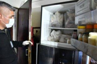 Macabro: allanaron una casa y encontraron siete gatos muertos en la heladera