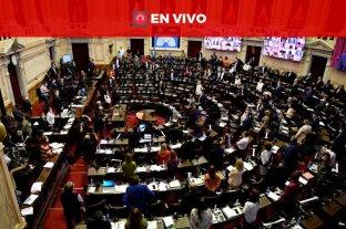 Diputados debaten un proyecto para prevenir  y erradicar la violencia institucional