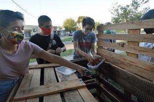 La ciudad tiene su primera compostera comunitaria - El jueves se empezó con el armado de la compostera, que se hizo con materiales reciclables, sobre todo con pallets: es como un gran cajón con tapa, indicó uno de sus impulsores. -