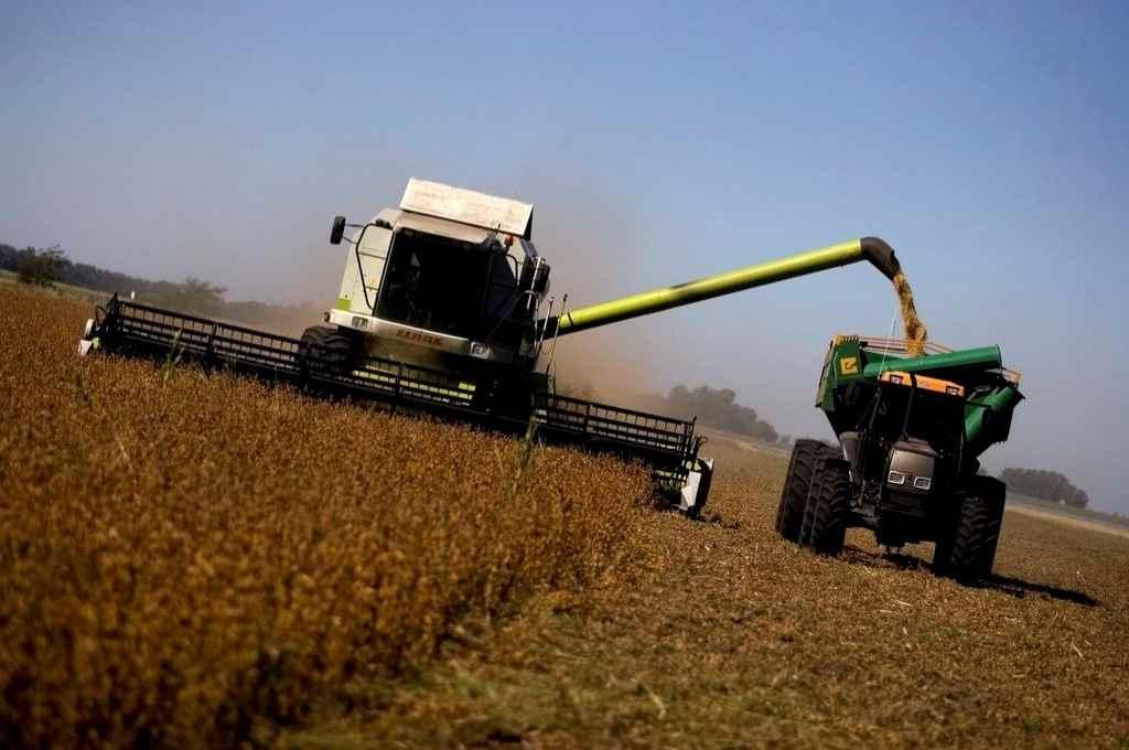 La proyección de la cosecha se mantiene en 43 millones de toneladas.    Crédito: Archivo