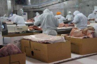 Mejora la exportación de carne de cerdo