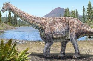 Chile presentó el descubrimiento de un mega dinosaurio en el desierto de Atacama