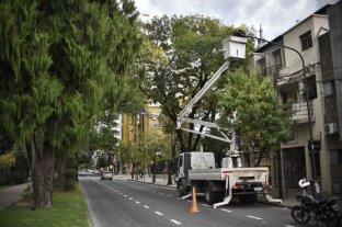Comenzó el recambio de las luminarias sobre Bulevar Gálvez y Pellegrini