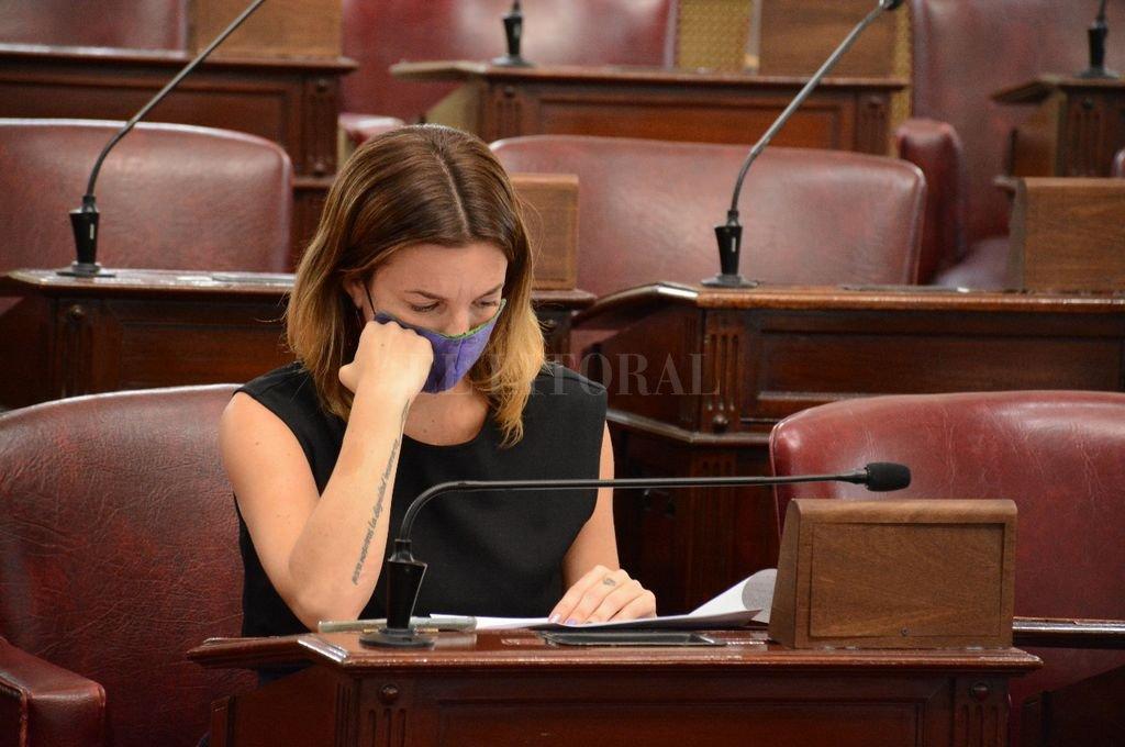 De Ponti ya estuvo representando a la Cámara de Diputados en la sesión conjunta realizada este jueves para destituir al fiscal Blanco. Crédito: El Litoral