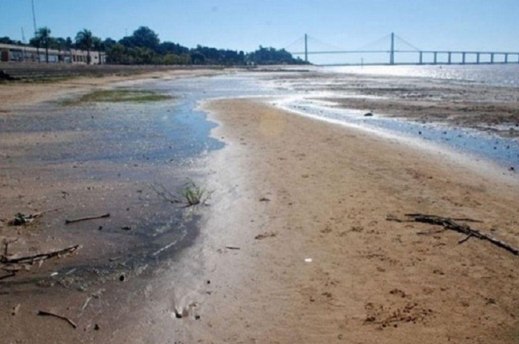 Costa del río Paraná en Corrientes. Crédito: Gentileza