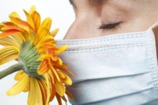 Un nuevo estudio revela por qué los enfermos pierden el olfato