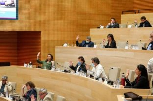 Córdoba adhiere a la ley nacional de uso medicinal del cannabis