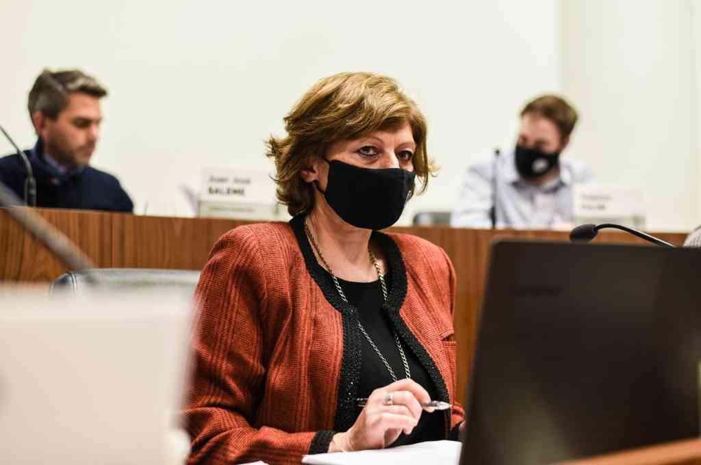 La concejala Laura Spina (UCR-FPCyS). Crédito: Gentileza