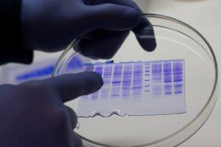 Coronavirus: el antiviral de un laboratorio santafesino obtuvo 97% de eficiencia en Fase 1