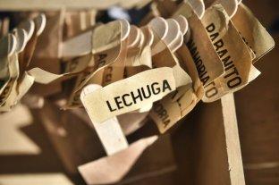 La Municipalidad dicta talleres sobre huertas agroecológicas familiares
