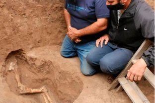 Video: hallan huesos de animales mientras cavaban un pozo negro