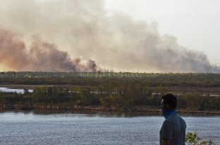 Monitorean el delta ante posibles nuevos incendios por la bajante del Paraná -  -
