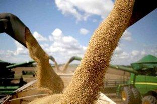 El precio de la soja salva a la peor cosecha en 10 años