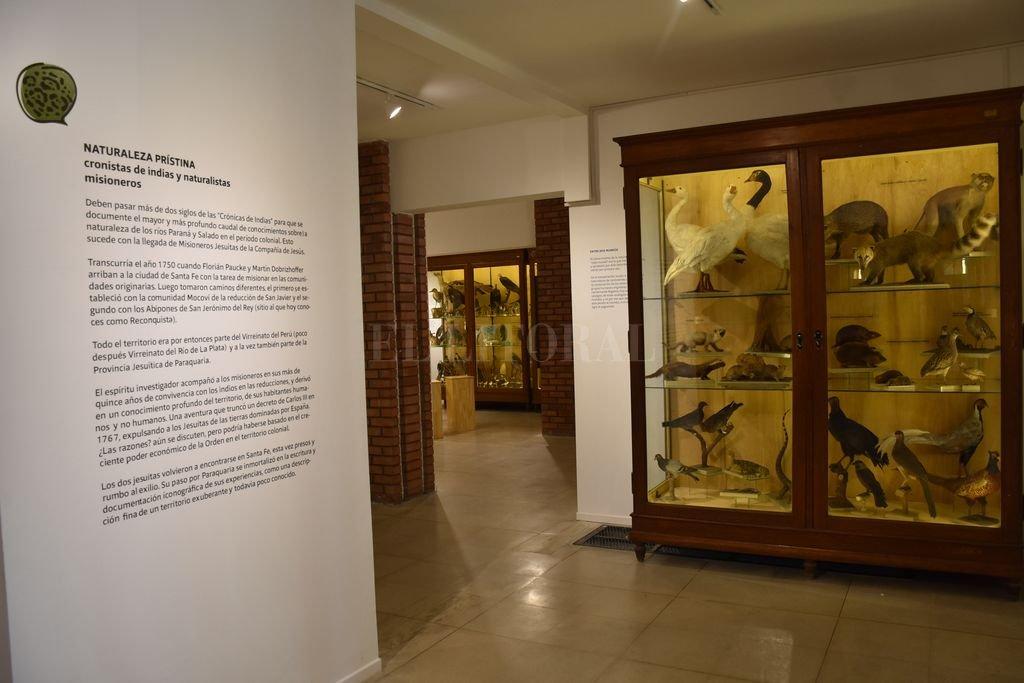 """""""La historia del museo, aquí relatada, ha sido elaborada con motivo del centenario de su fundación, y se sustenta en la revisión de diversas fuentes"""