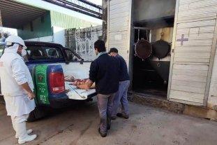 Inspección en carnicerías por supuesta faena clandestina