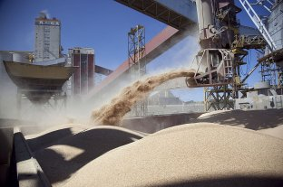 U$S 13,3 mil millones de la cadena agroindustrial al país