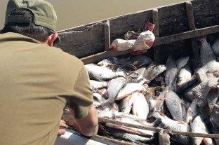 Santa Fe renovó la veda parcial de pesca comercial en el río Paraná