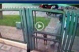 Video: odisea de un cadete  tras el robo de su moto en barrio Guadalupe