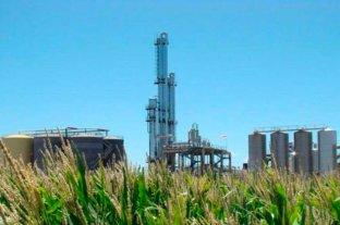 Cuestionamiento de obispos a la iniciativa sobre biocombustibles
