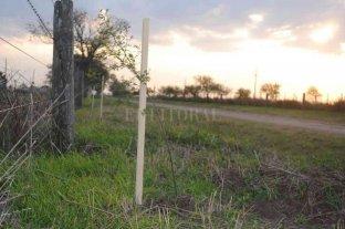 Se afianza el Plan de Forestación Rural en San Carlos Centro
