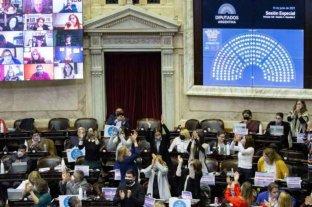 Diputados dio media sanción al cupo laboral travesti trans y lo envió al Senado