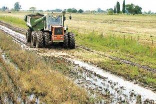 El clima frenó los procesos de siembra y de cosecha
