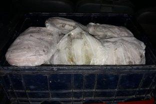 Decomisaron 70 kilos de filet de pejerrey en ruta 8 y 14