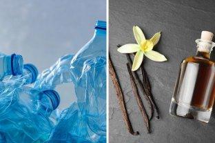 Bacterias pueden convertir el plástico en saborizante de vainilla