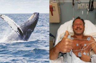 Estados Unidos: una ballena se tragó a un hombre y luego lo escupió vivo