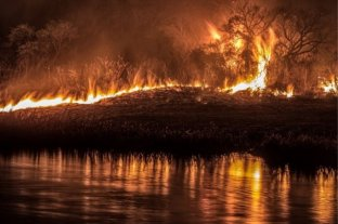 Intervienen en el delta del Paraná luego de detectar nuevos incendios en las islas