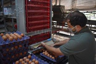 La economía de Santa Fe creció 5,2% en el primer trimestre