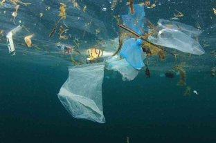 Encuentran una manera de localizar concentraciones de microplásticos en los océanos