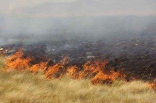 Continúan activos cuatro focos de incendios forestales en Entre Ríos
