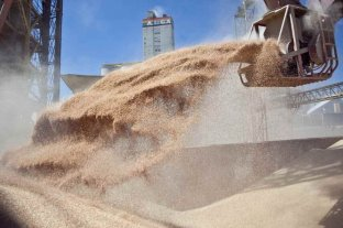Las ventas del complejo agroexportador cerraron en 89,7 millones de toneladas