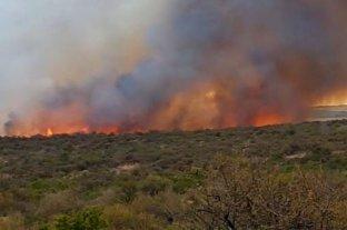Se registran focos activos de incendios forestales en Entre Ríos y San Luis