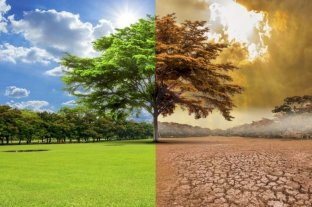 """La ONU advierte: """"el cambio climático alterará la vida en la Tierra en 30 años"""""""