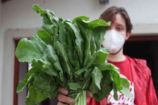 Venado Tuerto: mercados de proximidad con alimentos baratos y saludables
