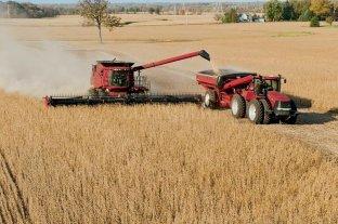 Concluyó la cosecha de soja 2020/21 con una producción de 43,5 millones de toneladas