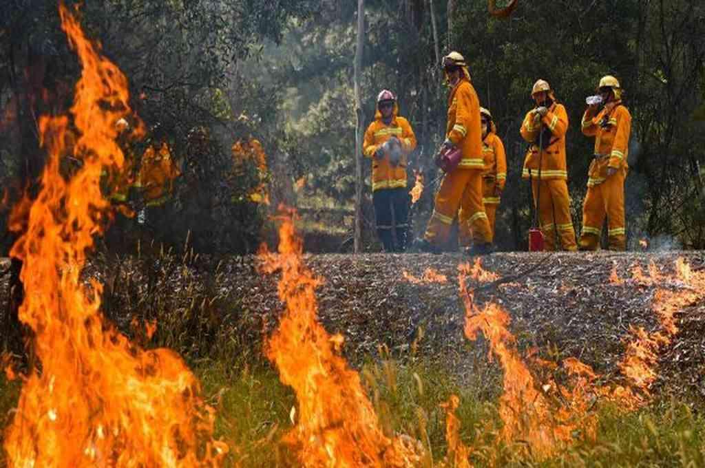 Solo en las últimas 24 horas se han iniciado más de 60 incendios forestales en Columbia Británica. Crédito: Imagen ilustrativa