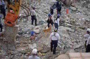 Hallaron ocho cuerpos más y ascienden a 36 los muertos tras el derrumbe del edificio en Miami