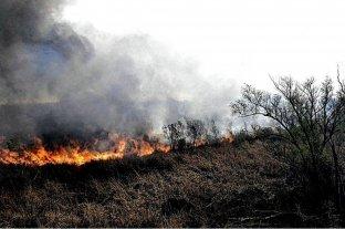 Entre Ríos y Mendoza registran focos activos de incendios forestales