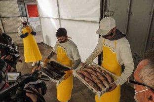 La Cámara de Procesamiento de Pescados suma empleo joven en San Javier