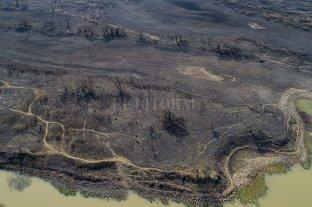 Extinguieron los incendios en el Delta de Entre Ríos