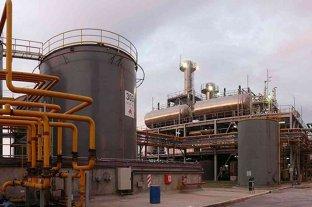 Ley de Biodiesel: desde Santa Fe proponen un fondo compensador
