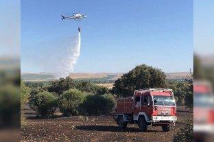 """Bomberos controlan dos incendios forestales que """"habrían sido causados intencionalmente"""""""